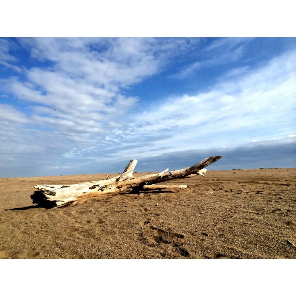oranjemund namibia beach